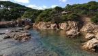 La costa de Tamariu: de cala d'aigua Xelida a Aiguablava