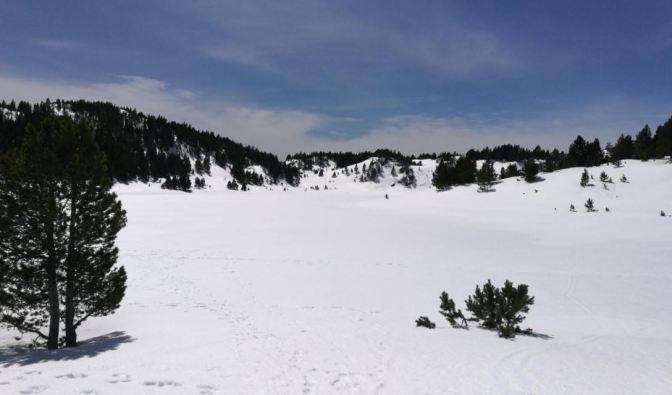 15- llac noir